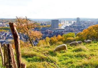 Liège-Les-Coteaux-de-la-Citadelle